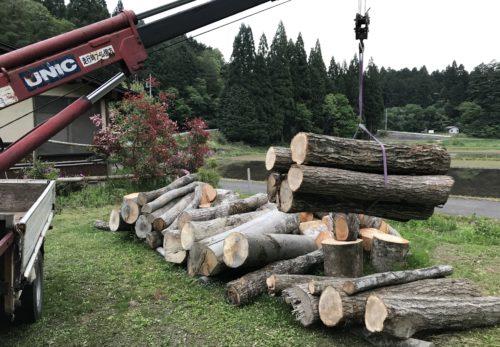 薪の原木販売