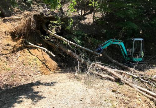 災害木処理